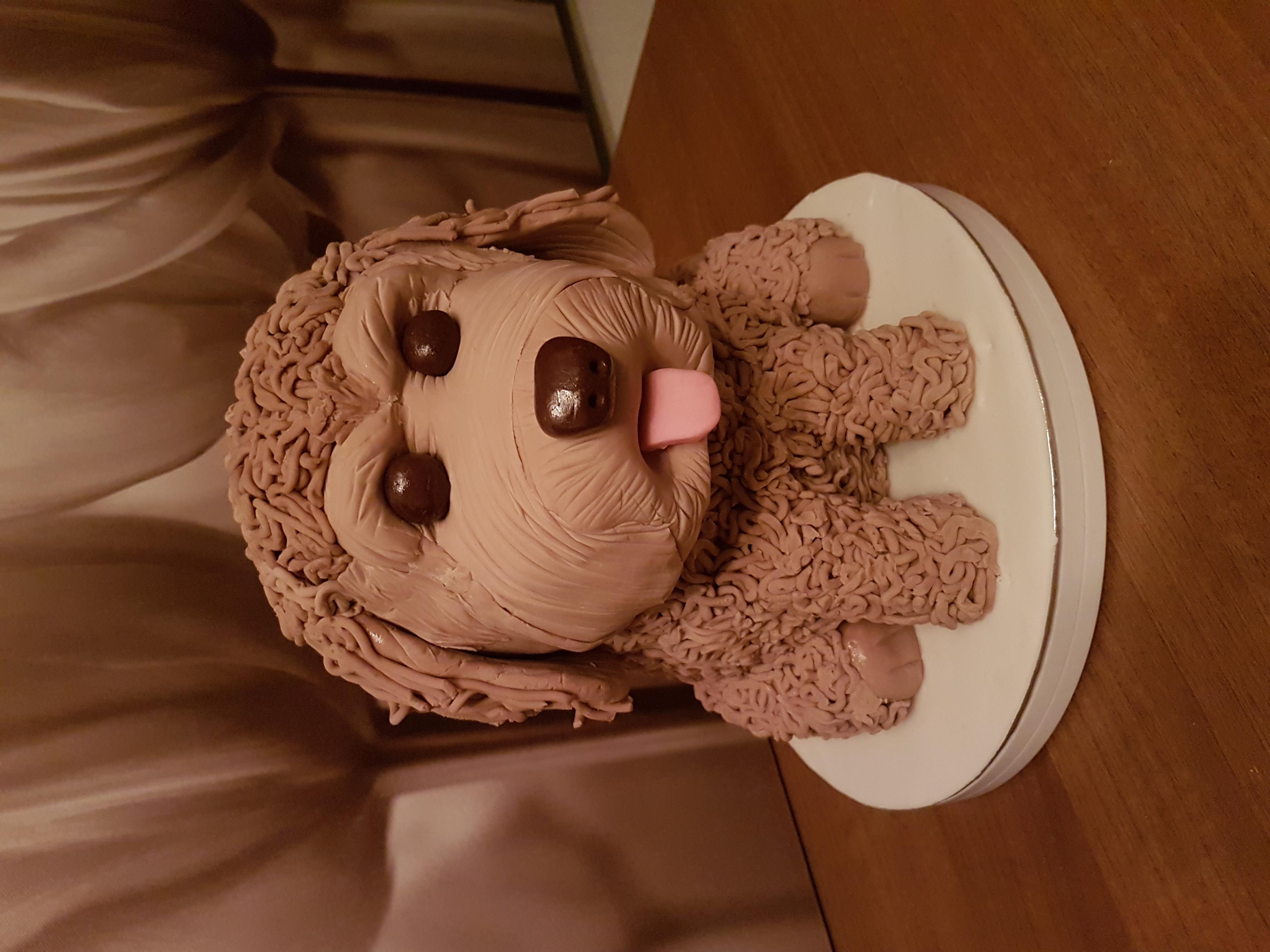 Modelled Dog Cake