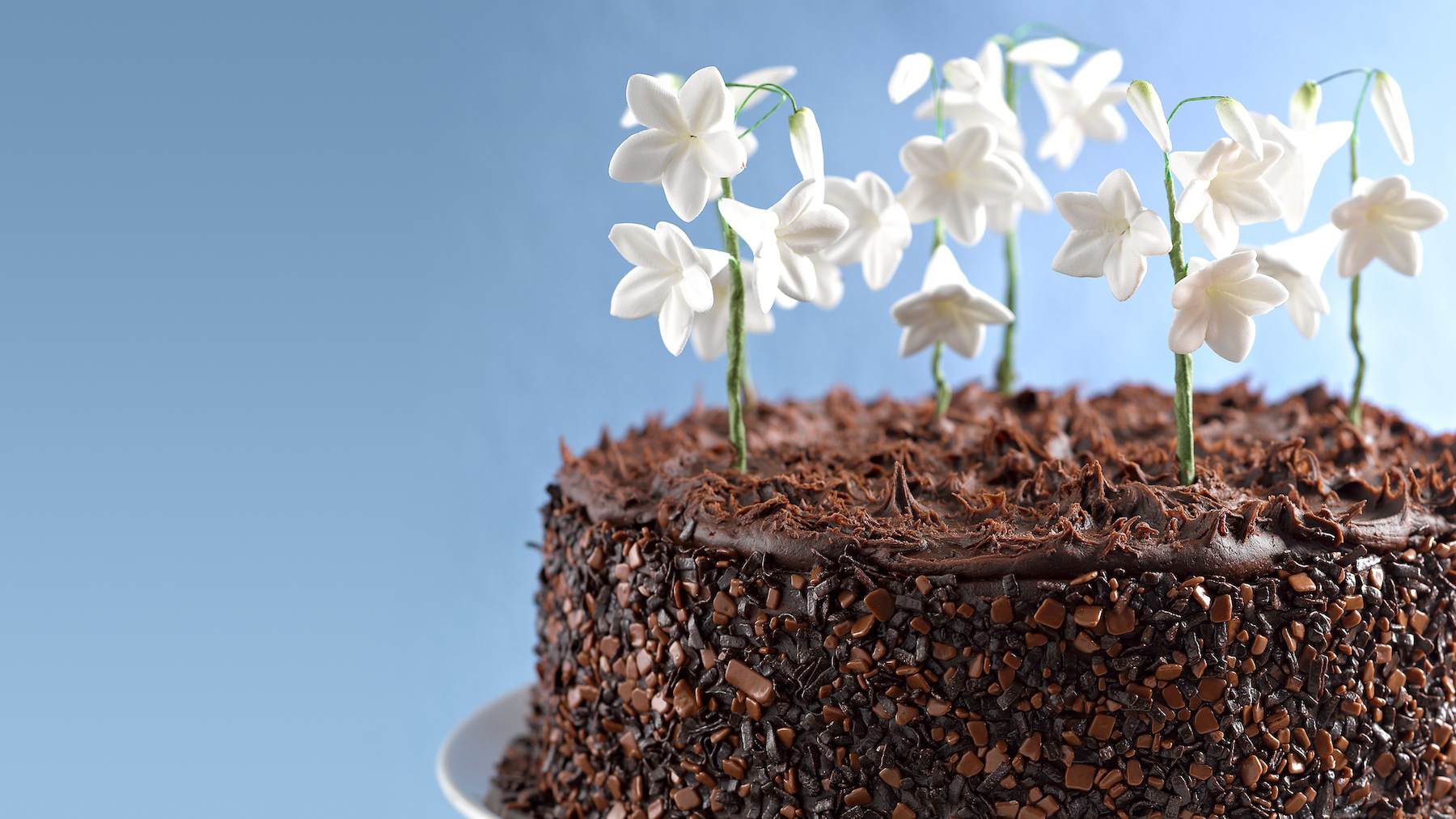 Snowdrop Cake Recipe