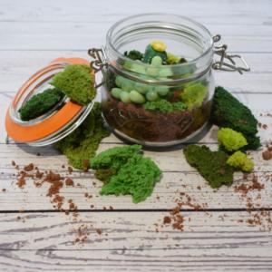 Succulent Cake Jar