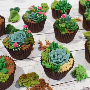 Succulent Cupcakes with Edible Moss