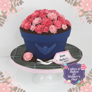 Flower Pot Cake by Rob Baker-Gall